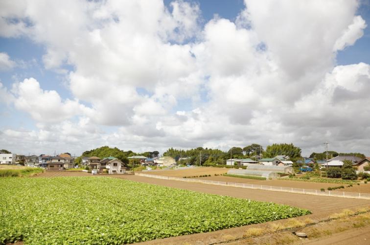 http://yutakashiki.net/files/gimgs/th-7_2_site photo.jpg